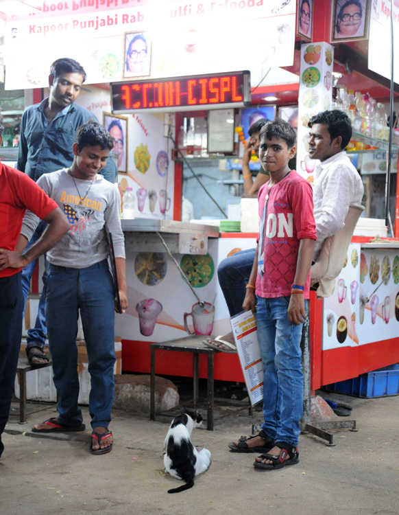 I Dont Like Peas Karen Harvey Mumbai 0309
